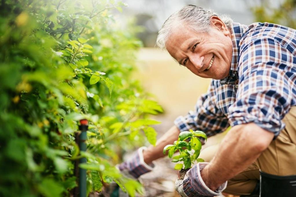 Что учитывается при расчете страховой пенсии